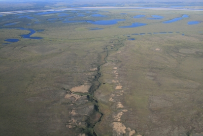Cryofluvial landforms of the North-Siberian lowlands (lowest reach of the Anabar River)